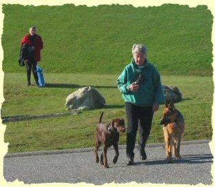 Dog Training, Burnaby, B.C.