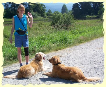 Dog Training Port Coquitlam
