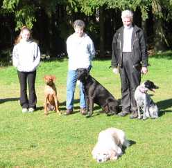Dog obedience training, Burnaby, Vancouver