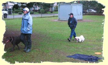 Puppy training Port Coquitlam