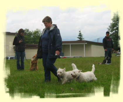 Burnaby Dog Trainer