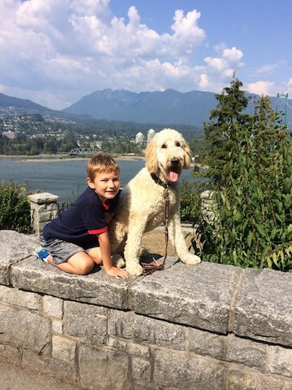 Maple Ridge Dog Training