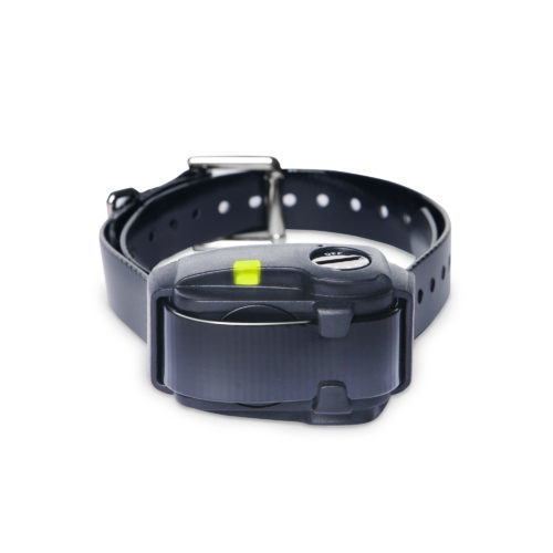 Dogtra YS200 Bark Collar