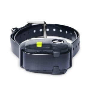Dogtra E-Collars